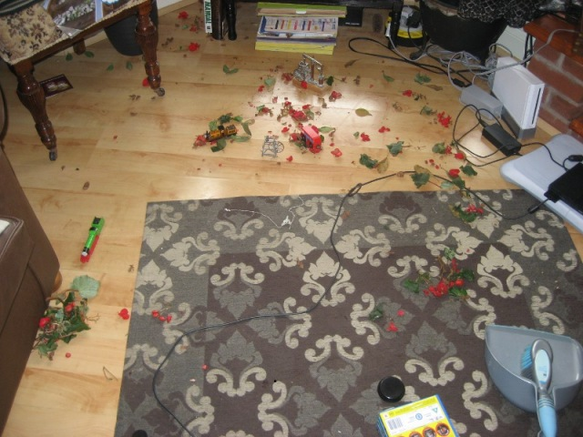 begonia destruction